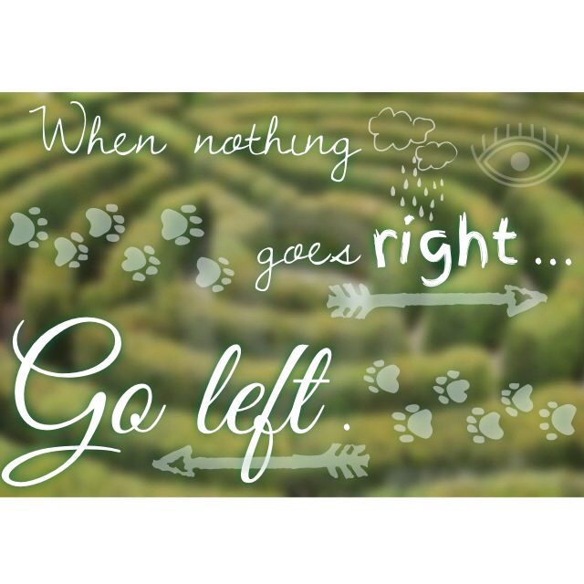 Go left. #selfmade #quote