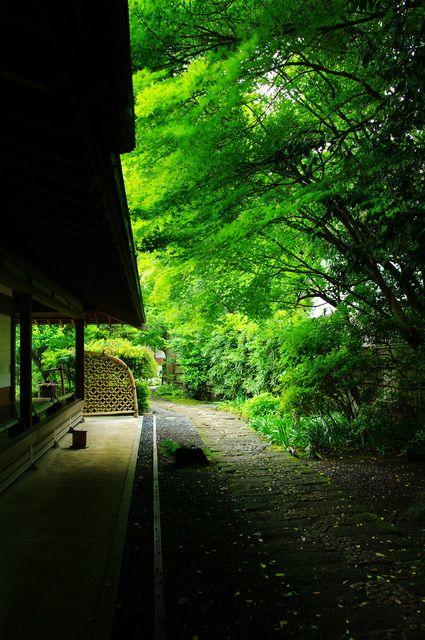 Japanese garden at Jomyo-ji temple, Kamakura, Japan 浄妙寺 鎌倉