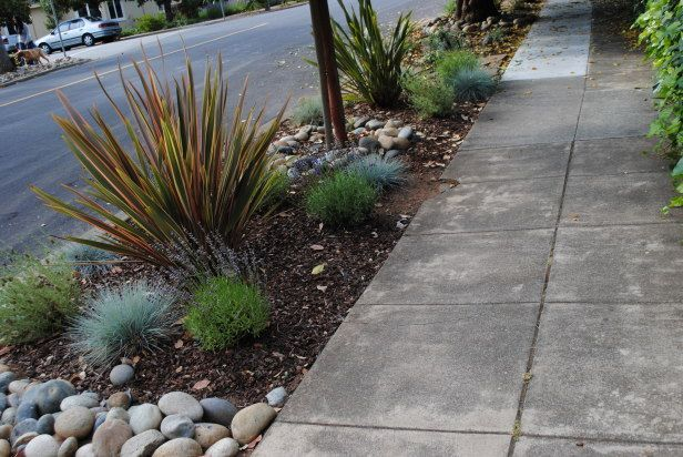 "Several great ideas for sidewalk landscaping- ""the hell strip"""