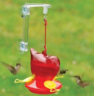 Question  Following a recent trip to Costa Rica we learned that the growth of use of sugar water in hummingbird feeders is leading to a form of diabetes