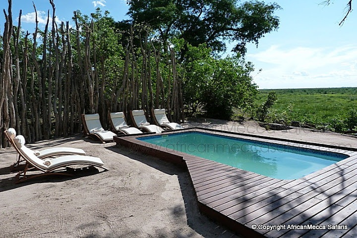 Linyati Bush Camp - Linyanti Safari - Picasa Web Albums