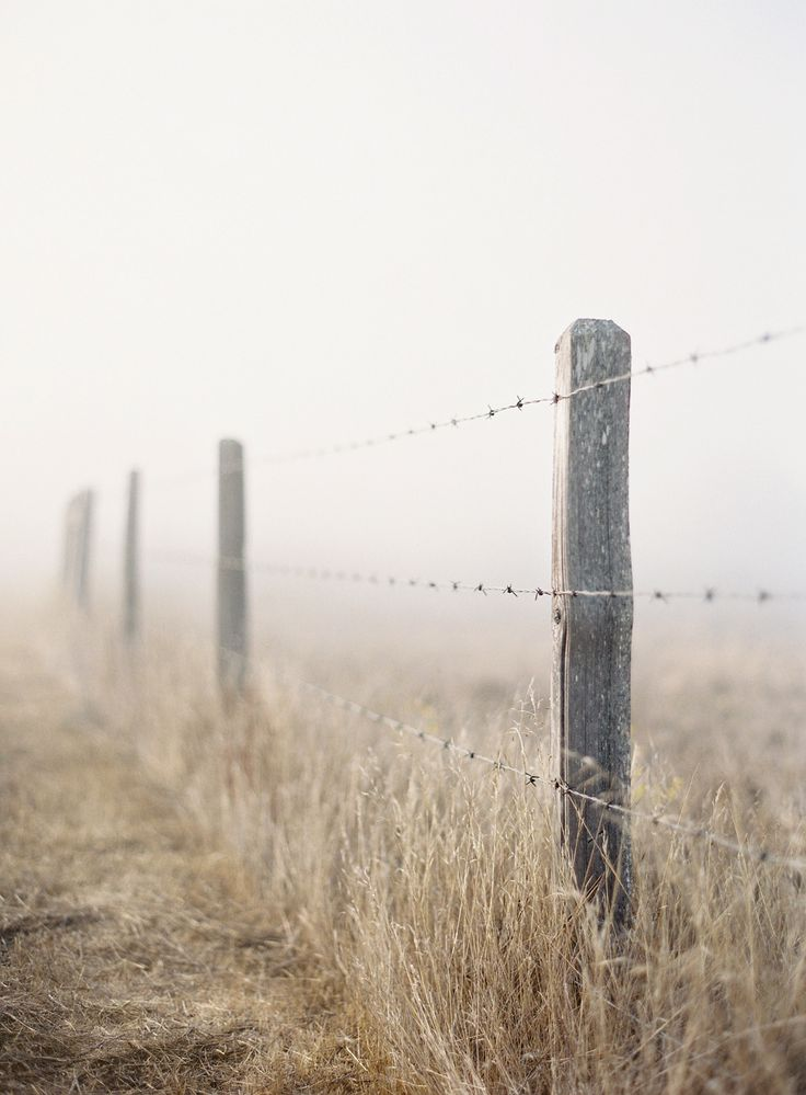 193 Best Images About Fences And Gates On Pinterest