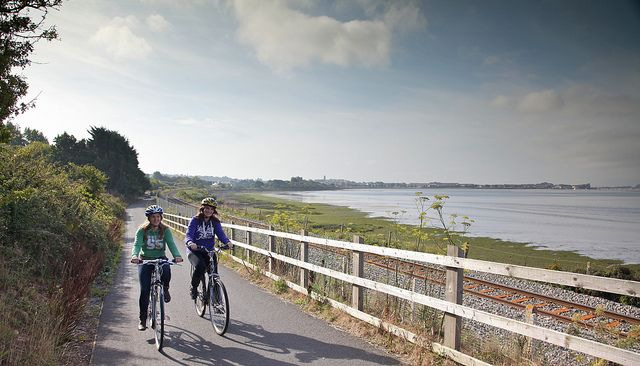 Cyclists on the Exe Estuary Trail