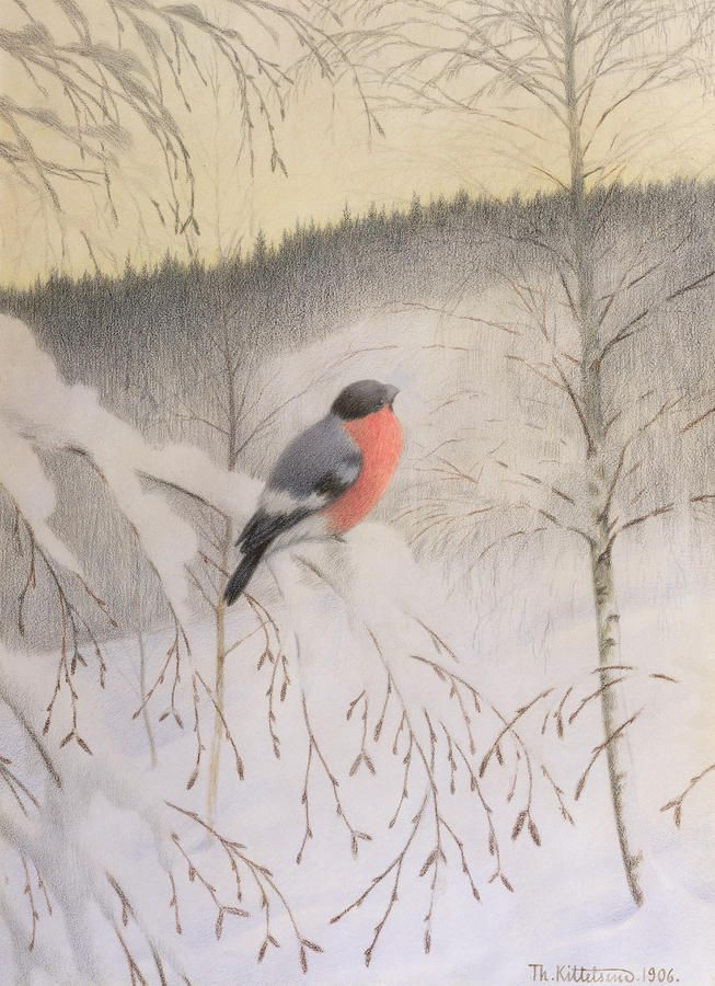 Bullfinch on Frosty Twig -Theodor Severin Kittelsen