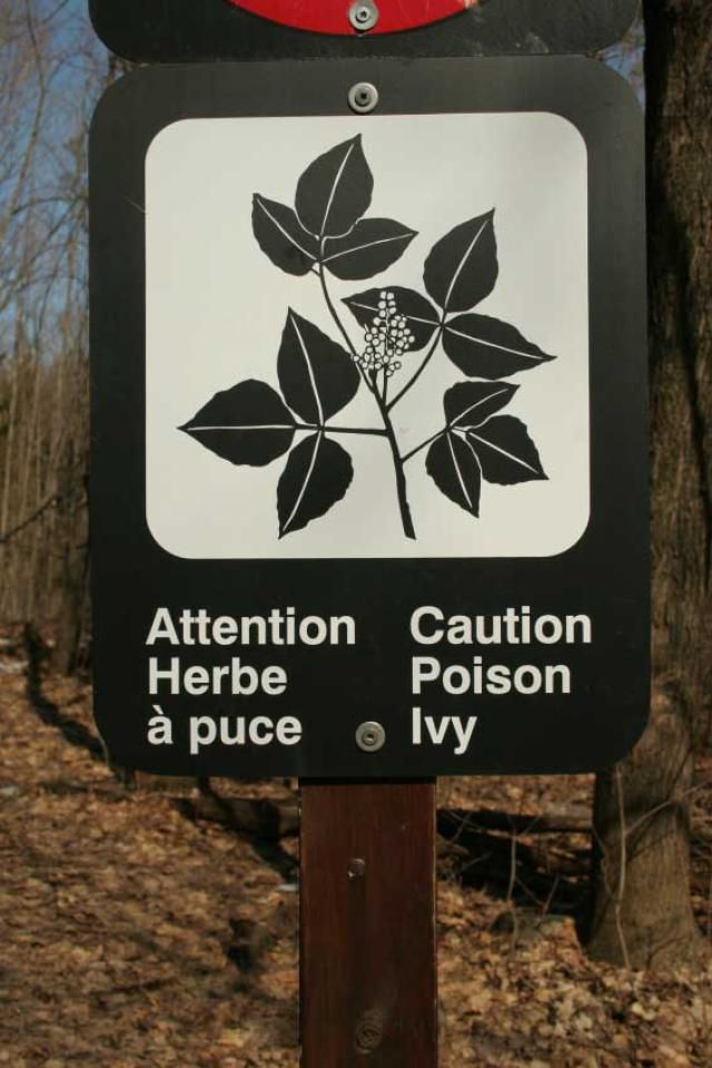 This warning sign is effective because not only does it explain that there is poison ivy near but gives a visual of what it looks like to help people further avoid it