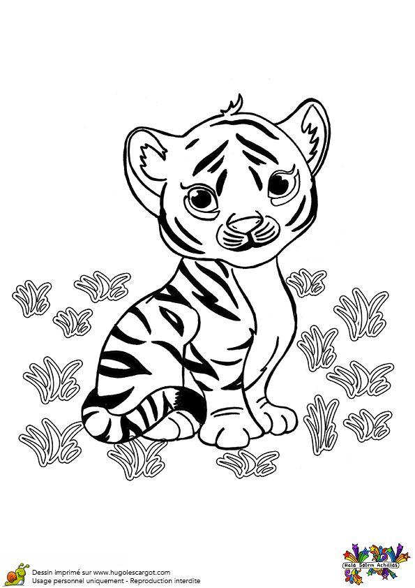 A colorier un b b tigre tout mignon coloriages de - Coloriage tigre ...