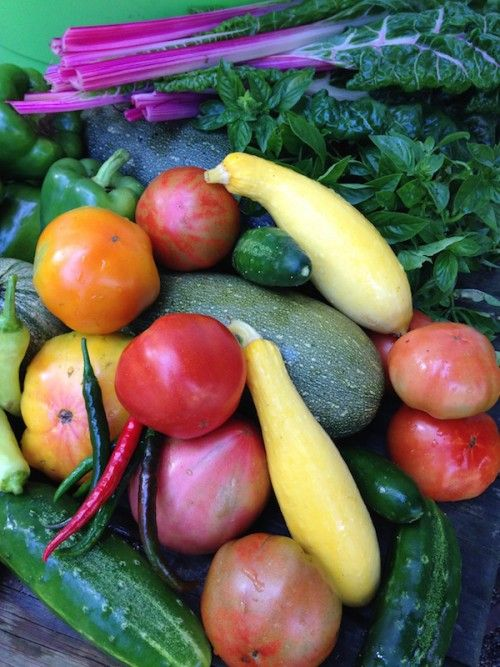 A sample of what Cherry Valley Organics' Pittsburgh CSA Farm Share boxes might include.