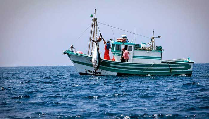 Agricultura publica en el BOJA las estrategias de desarrollo que redundarán en la dinamización y la sostenibilidad de las siete zonas pesqueras andaluzas.      Los Grupos de Acción Local de la Pesca (GALP) cuentan con luz verde para movilizar un montante de 18,9 millones de euros e impulsar, con ello, la dinamización y la sostenibilidad de las zonas pesqueras de la comunidad autónoma.   #axarquia #noticias #pesca