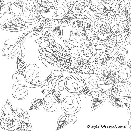 235 best Coloring for adults images on Pinterest