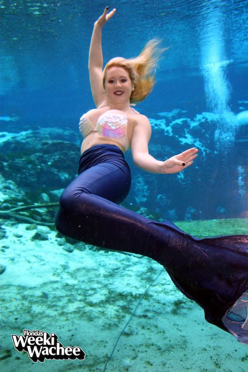 619 Best Images About Mermaids Of Weeki Wachee On
