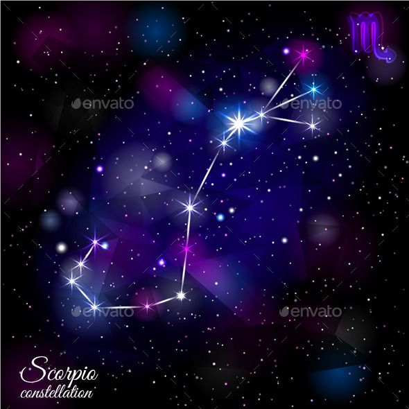 The 12 Zodiacal Constellations