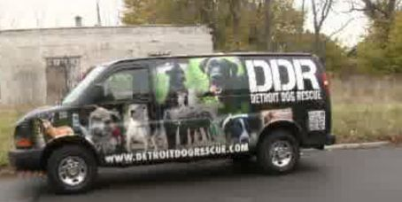 Detroit Dog Rescue helps with Sandy relief effort |   Detriot Dog Rescue are angels to the forgotten Dogs of Detroit....