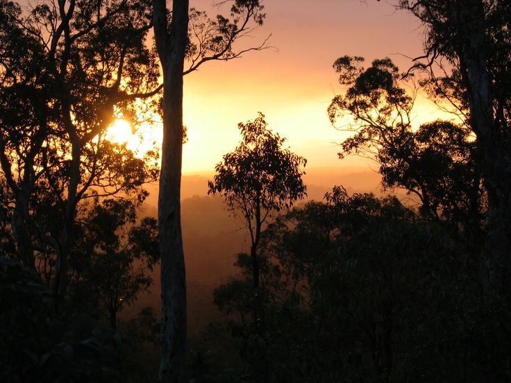 Summer sunset at Gidgegannup, Western Australia
