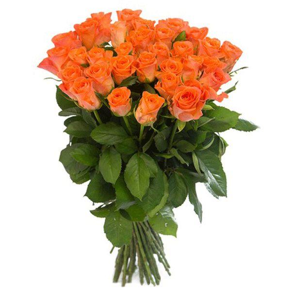 Артикул: 035-17 Состав букета: 29 роз кораллового цвета, оформление Размер: Высота букета 50 см Роза: Выращенная в Украине http://rose.org.ua/bukety-iz-roz/1003-buket-tsvetov-vodovorot-zhelanij.html #букеты #букетроз #доставкацветов #RoseLife #flowers #SendFlowers #купитьрозы #заказатьрозы   #розыпоштучно #доставкацветовкиев #доставкацветовукраина #срочнаядоставка #заказатьрозыкиев