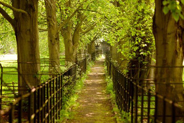 Petersham Properties >> United Kingdom >> Cotswolds >> Cornwell Manor