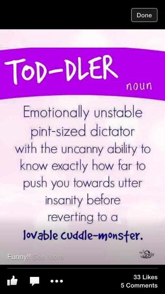 Toddler - emotionally unstable pint-sized dictator with ...