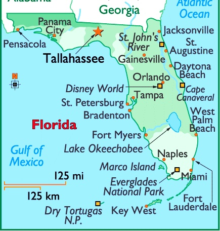 Map Of Florida Usa Geology - Florida towns map