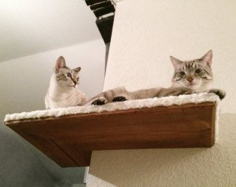 Dining Room Cat Shelf von CatastrophiCreations auf Etsy
