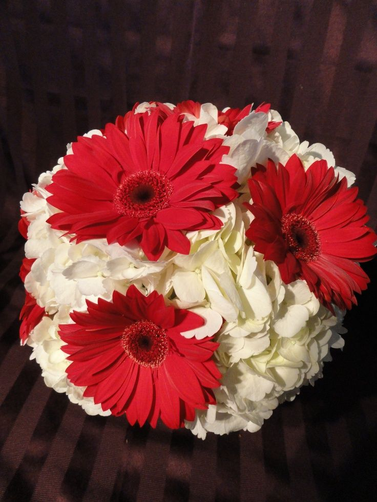 Pinterest daisy wedding bouquets gerbera daisy bouquet and daisy - White And Red Hydrangea Bouquet White Hydrangea Amp Red