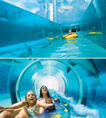 Before I die I must go on a shark slide