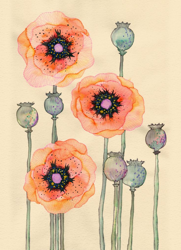 maybe just the orange flowers clustered together tattooed on the back of my neck.. the watercolored look on a tat would be dope