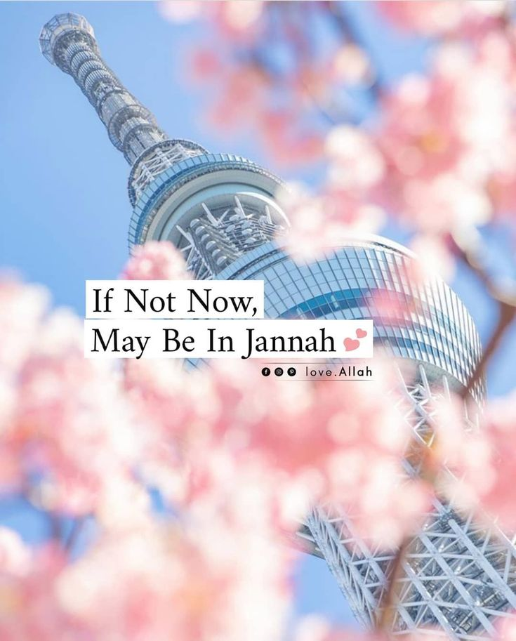 1000 Quran Quotes Inspiring Quotes About Life Quran Quotes Verses