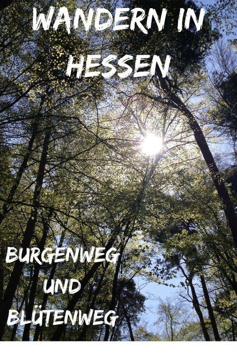 Heute geht es auf meiner Reise durch Deutschland zum Wandern nach Hessen. Der Burgenweg und Blütenweg an der Bergstraße ist besonders im Frühjahr zu empfehlen. Nicht nur die Kirschblüten werden Dich begeistern, auch die Burgen lohnen eine Wanderung.