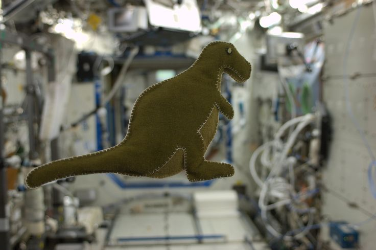 Made in space!!  I made this dinosaur for my son last Sunday, September 22.  It is made out of velcro-like fabric that lines the Russian food containers found here on the International Space Station.  It is lightly stuffed with scraps from a used t-shirt. KN from space.