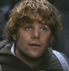Sean Astin as Sam Wise Gamgee in: The Lord of the Rings.  The real hero...If only we had more Sams in this world!