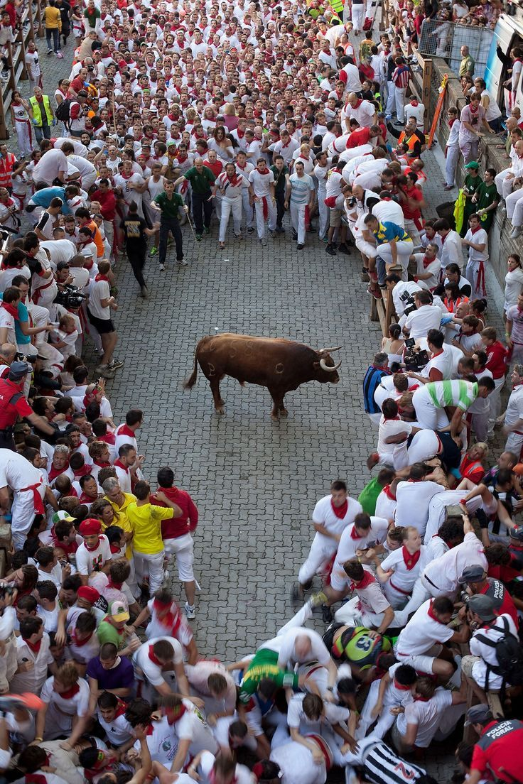 Only photos can possibly do the Running of the Bulls any justice. Here some of the most amazing shots from this year's festival, so far. http://mashable.com/2013/07/08/running-of-the-bulls-crazy-pics/