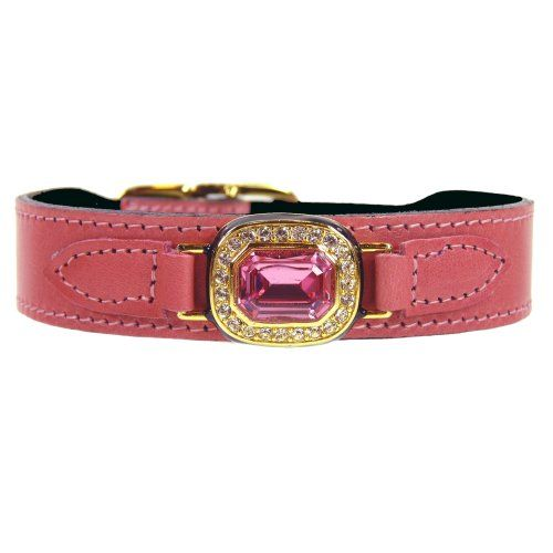 Louis Vuitton Dog Collar Amazon