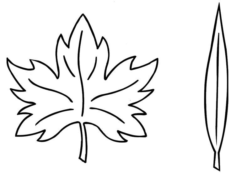 Resultado de imagen para hojas largas para colorear   hojas ...