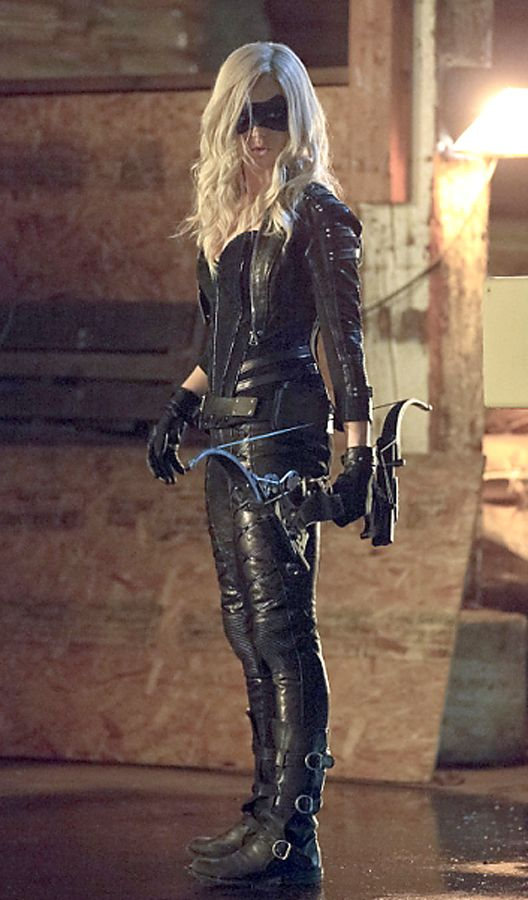 I honestly think the makers of CW's Arrow made a good decision making Sara Lance the Black Canary. Such a good actress