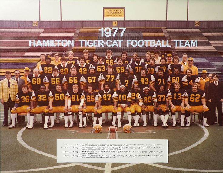 Hamilton Wildcats Football Canadian