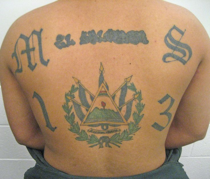 Ms13 tattoo the ms 13 on this mans back stands for mara