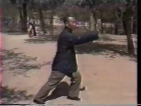 Wang Peisheng chinese documentary 1989