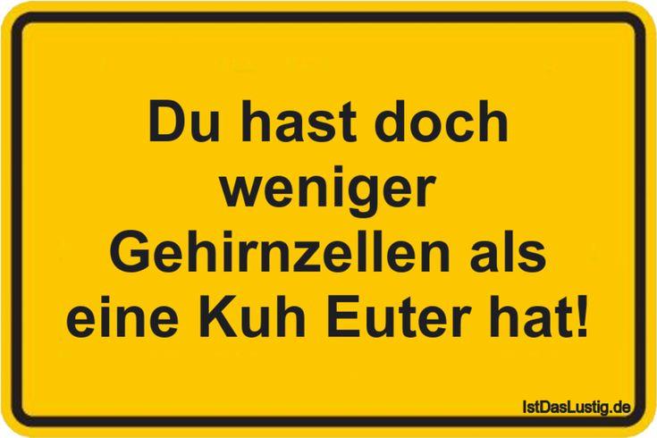 Du hast doch weniger Gehirnzellen als eine Kuh Euter hat! ... gefunden auf https://www.istdaslustig.de/spruch/783 #lustig #sprüche #fun #spass