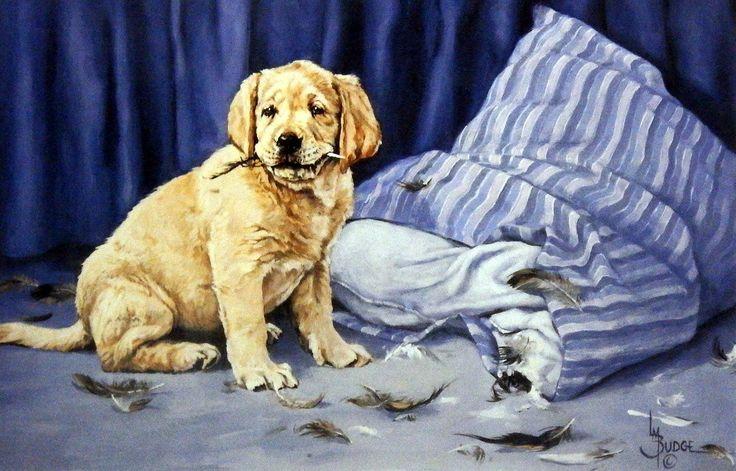 http://www.wildlifeprints.com/collections/budge/products/linda-budge-golden-mischief-12-x-7-75