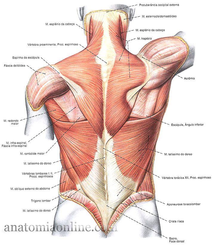 Alívio do nervo ciático