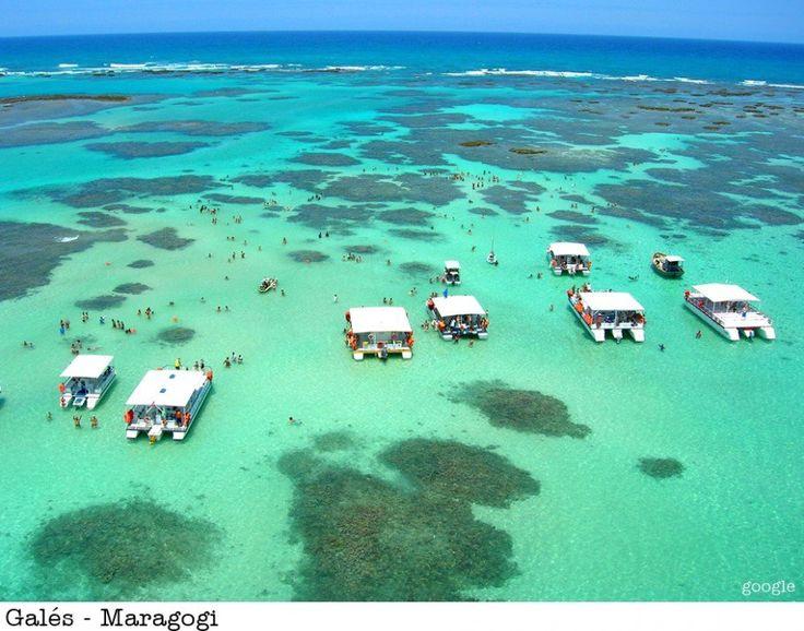 Um paraíso em Alagoas... as piscinas naturais da Galés são as mais famosas e a maior da região com 6km de costa em Maragogi.