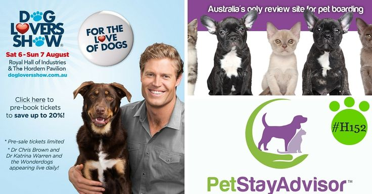 1 more #sleep! #HordernPavilion #H152 Dog Lovers Show advance #ticket sales are strong! http://dogloversshow.com.au/sydney/