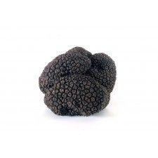 Black Summer Truffle (Price by pound)