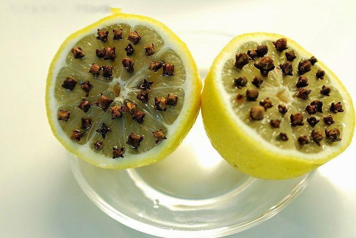 Эффективное и натуральное средство от комаров