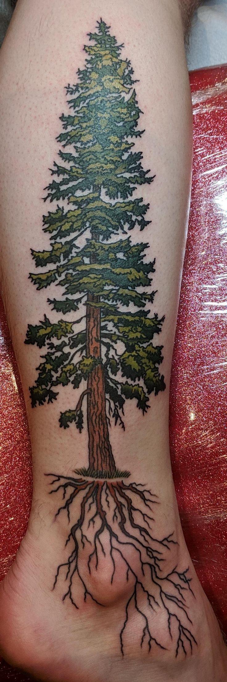 Douglas fir tree by brynn sladky fortune tattoo