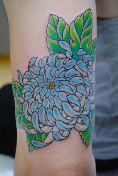 22 best japanese chrysanthemum flower tattoo images on pinterest chrysanthemum chrysanthemums. Black Bedroom Furniture Sets. Home Design Ideas