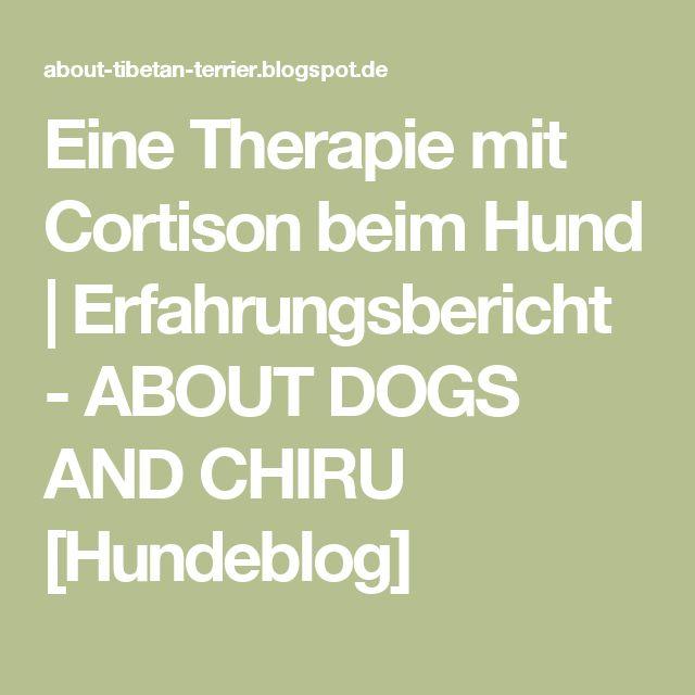 Eine Therapie mit  Cortison beim Hund | Erfahrungsbericht - ABOUT DOGS AND CHIRU [Hundeblog]