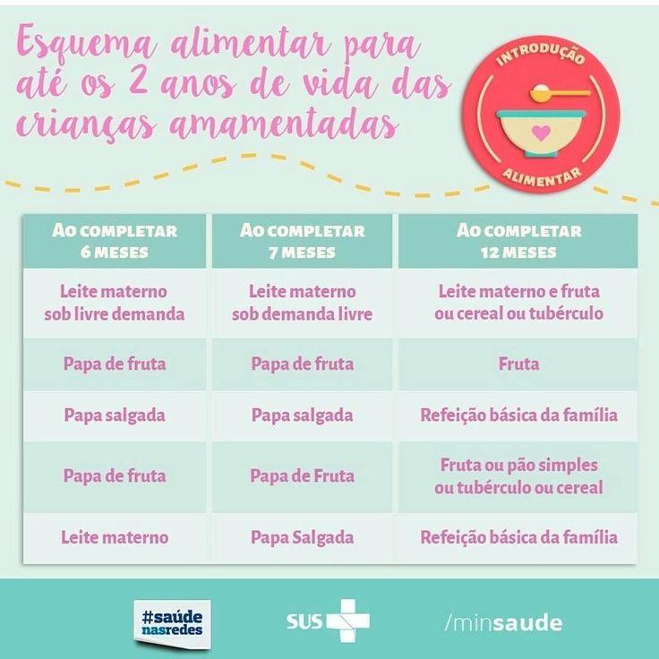 Mamães e futuras Mamães boa noite!! Venho compartilhar o esquema alimentar para até 2 anos de vida publicado pelo @minsaude... vamos praticá-lo para garantir que nossos filhos cresçam saudáveis!!  . . #Deusnocomando #paramamaesebebes #babyplanner #assessoriamaterna #alimentacao #alimentacaoatedoisanos #leitematerno #amamentacao #papinha #papinhadoce #papinhasalgada #maternidade #gestante #mae #mamae #bebe #baby #pregnant #mommy #pai #papai #dad #familia #familiacrescendo #ribeiraopreto…