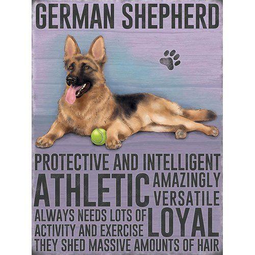 East Urban Home German Shepherd Graphic Art Print On Metal