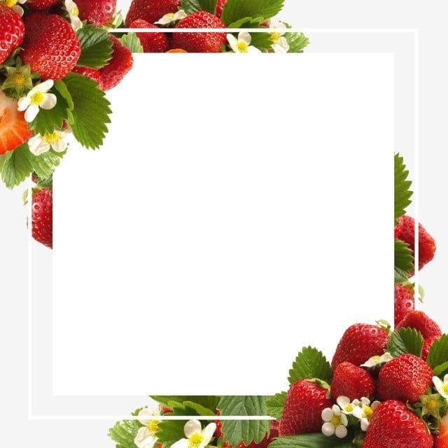 Floresta De Morangos Frescos Frutas Banner Borda Morango Quadro Armacao Imagem Png E Psd Para Download Gratuito Fruit Wallpaper Fruit Clipart Strawberry Background