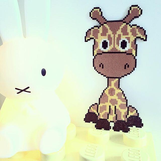 Giraffe hama beads by takacs_anja - Pattern: https://de.pinterest.com/pin/374291419013031076/
